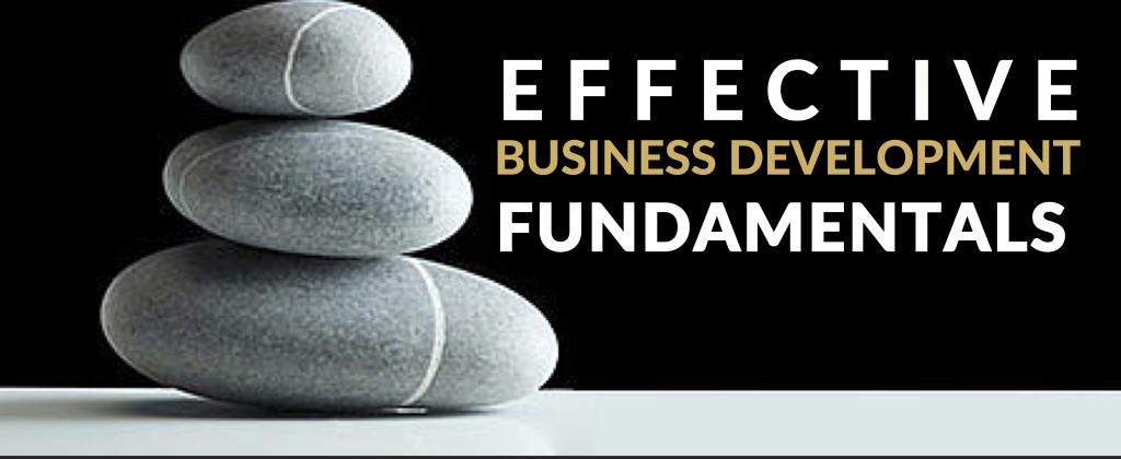 Effective Business Development Fundamentals