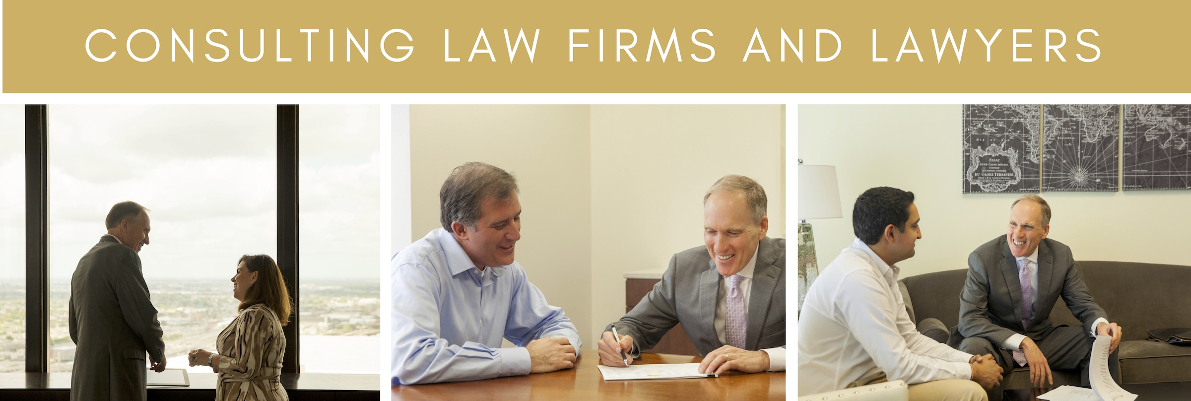 Law_Firm_Consultant_Banner_PerformLaw_.jpg