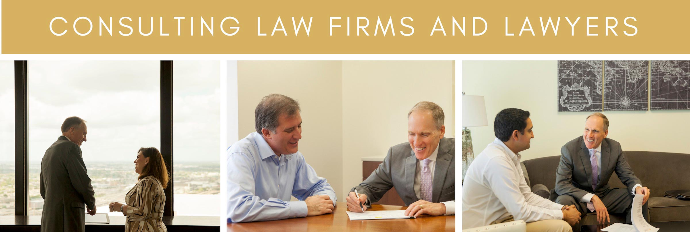Law firm consultants